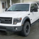Ford F-150 Ecoboost Owners Talk Engine Reliability