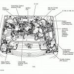 1999 Ford 5 7 Engine Diagram Full Hd Version Engine Diagram