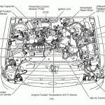 5 7L Vortec Engine Diagram Full Hd Version Engine Diagram