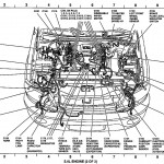Diagram] 2007 Ford Focus 2 0L Engine Diagram Full Version Hd