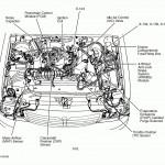 Ford 4 9L Engine Cylinder Diagram - Diagram 2222