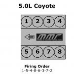 Coyote Engine Specs   Modular Motorsports Racing