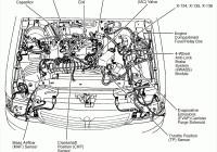 2001 Ford Escape V6 Cylinder Diagram – Wiring Diagram