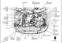 2005 Ford Freestar Spark Plug Wire Diagram – 4Bt Ford