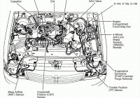 Ford 4 9L Engine Cylinder Diagram – Diagram 2222