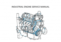 Tsg416 Service Manual Rev0 – Edi Ford Industrial Engine